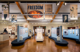 A view of the exhibition FREEDOM: